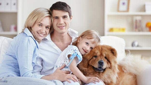 Wills & Trusts dog-young-family Direct Wills Lichfield
